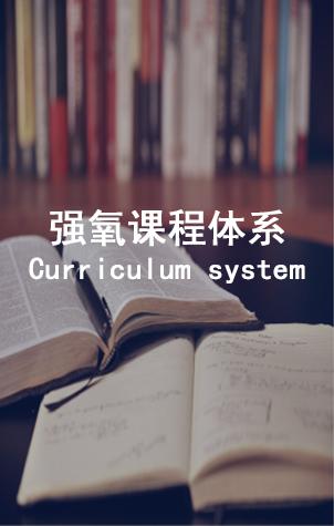强氧课程体系